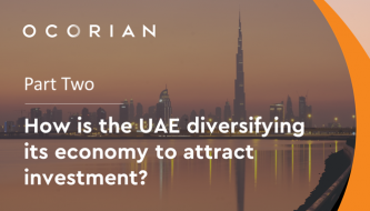 How is the UAE diversifying its economy?