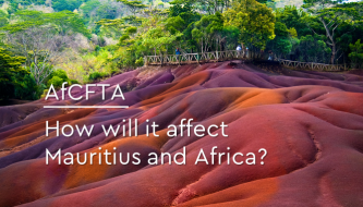 AfCFTA - How will it affect Africa?