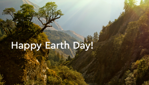 Gifting our employees trees this Earth Day